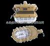 森本SBD1101-YQL50A森本SBD1101-YQL50A免维护节能管吊式防爆无极灯 SBD1101-YQL50A森本厂家供应