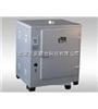 大型电热鼓风干燥箱(单门)