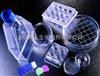法国思达高STA血凝仪试剂(进口分装)(即用液体型)