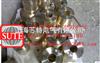 铸铜加热器 (塑料瓶口机)