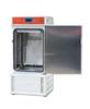 DHS-250恒温恒湿试验箱