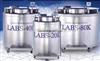 美国泰莱华顿Taylor-wharton液氮罐(LABS系列,大容量冻存盒)