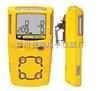 BW-03型便携式防水型臭氧检测仪