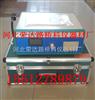 氯離子含量測定儀 價格