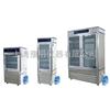 HWS -250恒温恒湿培养箱