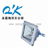 NFC9101-J150NFC9101-J150 海洋王双端金卤灯//NFC9101-J150防眩棚顶灯