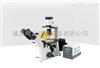 XD倒置荧光显微镜