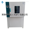 LBT熱空氣老化試驗箱