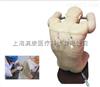 KAH/L260B高级综合穿刺术技能训练模拟人(前倾坐位)