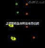 RNAi干扰检测厂家